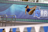 10-16-2015, UWF Argos, diving, University of West Florida sport photography, 3829