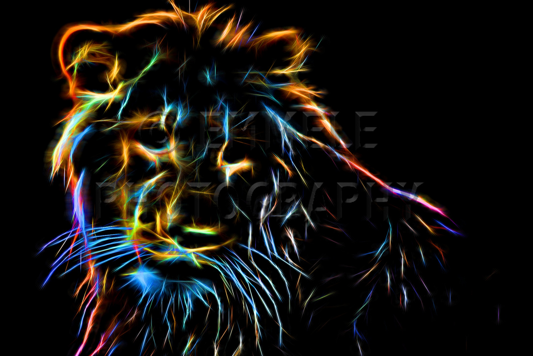 2, Cool glow effect lion, Effect Photography