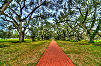 """Emmele Photography"", Louisiana, ""Oak Alley Plantation in Vacherie"", ""all kinds of flowers"", ""all kinds of photos of the nature"", ""awesome landscape photography"", ""awesome photography art for sale"", """