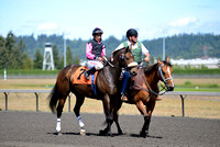 Emerald Downs Washington Horse Racing, sport photography, animal photography, 08-21-2016, 0095