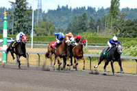 Emerald Downs Washington Horse Racing, sport photography, animal photography, 08-21-2016, 0017