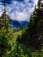 Lake Twenty-two Trail, Washington State, nature photography, 06-15-2016, 105132