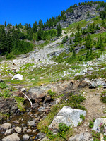 Yellow Aster Butte Mountain Trail Hike, Washington, Landscape Photography, 08-04-2016, 121958