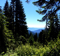 Park Butte, Baker Mountain Area, Mountain Summit Trail Photography, 07-20-2016, 110310