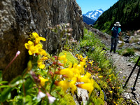 Yellow Aster Butte Mountain Trail Hike, Washington, Landscape Photography, 08-04-2016, 122306