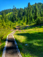 Yellow Aster Butte Mountain Trail Hike, Washington, Landscape Photography, 08-04-2016, 114549