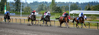 Emerald Downs Washington Horse Racing, sport photography, animal photography, 08-21-2016, 0130