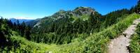 Yellow Aster Butte Mountain Trail Hike, Washington, Landscape Photography, 08-04-2016, 115723