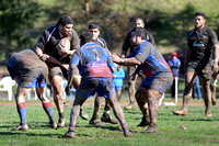 Rugby at Pat Ryan Field, sport photography, Seattle, Washington 03-18-2017, 0934