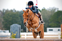 Gulf Coast Classic Company's Pensacola Winter Series, 01-25-2014, Horses, Horse  Photography, Animal Photography, 4695