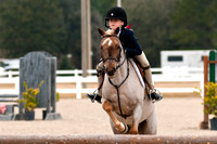 Gulf Coast Classic Company's Pensacola Winter Series, 01-25-2014, Horses, Horse  Photography, Animal Photography, 4699