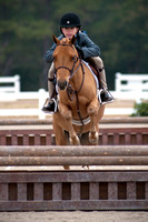 Gulf Coast Classic Company's Pensacola Winter Series, 01-25-2014, Horses, Horse  Photography, Animal Photography, 4752