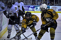 124 , Pensacola Ice Flyers vs Mississippi RiverKings 03-24-2012 Ice hockey, sports photog