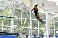 10-11-2013 First ever diving competition for UWF