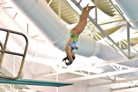 01-03-15, UWF swimming and Diving,3972