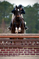 Gulf Coast Classic Company's Pensacola Winter Series, 01-25-2014, Horses, Horse  Photography, Animal Photography, 4780