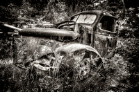 Field of Old Rusty Cars in dark sephia tone, Crawfordville, Wakulla county, route 319, 05-02-2014, 5270, Automotive Photography