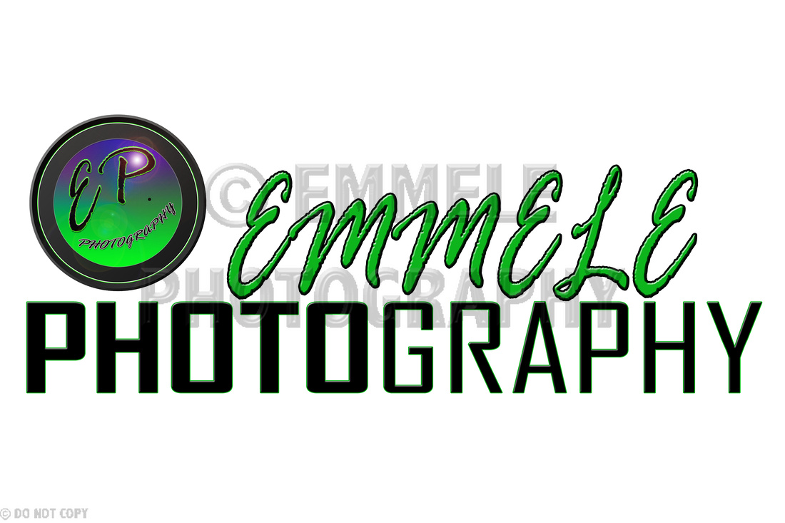 SOLD! Emmele Photography Logo, Logos and Logo Designs, Photoshop Photography