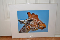 Funny giraffe showing its tongue, 16x20 mat, sale for $50.00+S/H