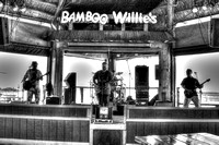 Cornbred at Bamboo Willies, Pensacola Florida, 08-11-2014, Bands, Music, Event Photography, hdr, bw, 2331