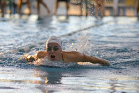 10-16-2015, UWF Argos, swimming, University of West Florida sport photography, 3741