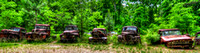 Field of Old Rusty Cars in panorama, Crawfordville, Wakulla county, route 319, 05-02-2014, 5274, Automotive Photography