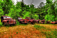 Field of Old Rusty Cars, Crawfordville, Wakulla county, route 319, 05-02-2014, 5237, Automotive Photography