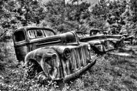 Field of Old Rusty Cars in black and white, Crawfordville, Wakulla county, route 319, 05-02-2014, 5228, Automotive Photography